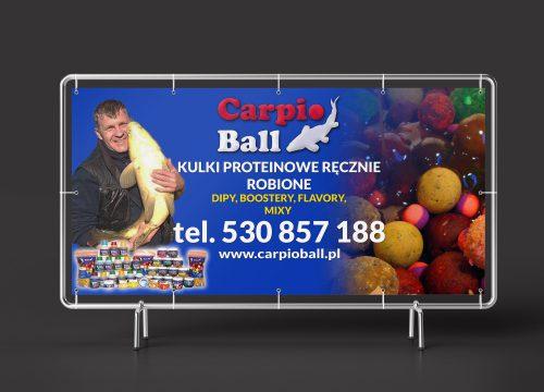 Banner_carpioball_2